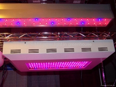 led growth panel for plant growth