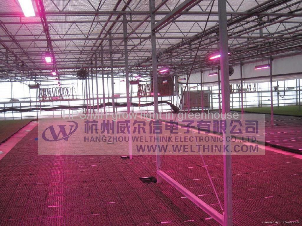 led grow light for plant growth 3