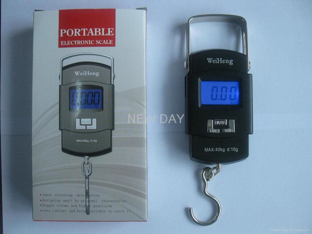 Portable Scale 1