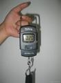 Portable Scale 2