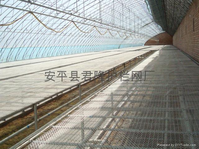 温室苗床网 3