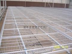 温室苗床网
