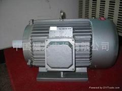 electirc motor