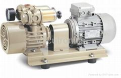 Rotary Vane Vacuum Pump-