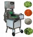 FC-305 Leaf vegetable cutting machine