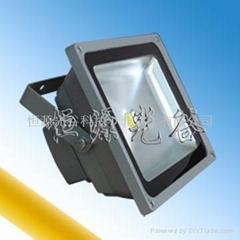 大功率LED投光燈30W50W100W