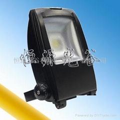 新款灯壳LED泛光灯