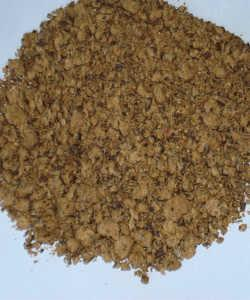 Extracted Cottonseed Meal 1