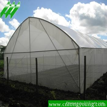 Economical Tunnel Greenhouse 2