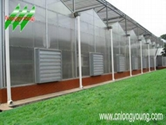 Polycarbonate(PC) greenhouse