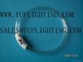 CIRCULINE UV LAMP