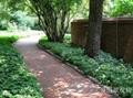 園林景觀磚 2