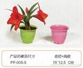 植物纖維環保花盆 4
