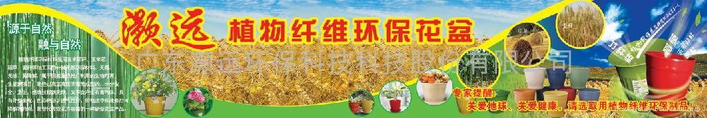 植物纖維環保花盆 5