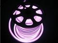 RGB LED NEON FLEX