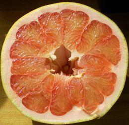 red pomelo 4