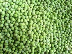 Frozen green peas/ green beans