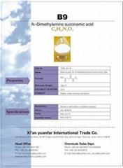 B- Nine(N-Dimethylamino Succinamic Acid)