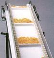 Foodstuff Conveyor Belt