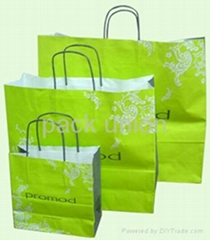 Paper Shopping Bag / Paper Bag