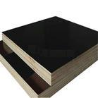 imported brown film plywood