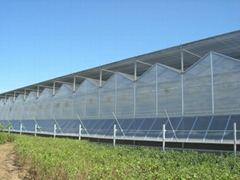 Polycarbonate panel gutter-connected greenhouse