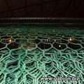 PVC Gabion mesh 3