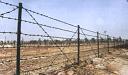 刺绳防护网  场地围网   防护网