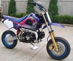Dirt Bike XKDB100