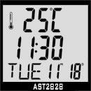 多媒体IC-AST2828 频显钟控收音机
