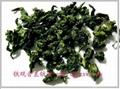 鐵觀音09秋茶