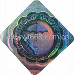 High resolution hologram label