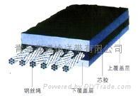 青島輸送帶阻燃鋼絲繩芯輸送帶 2