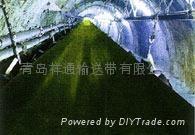 青島輸送帶阻燃鋼絲繩芯輸送帶 3