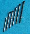 Bull Nails China manufacturer 2