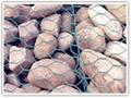 Stone gabion mesh  1