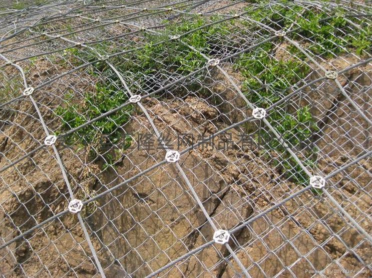 Wire rope fence fencing
