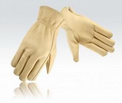 Driver Glove Beige Color