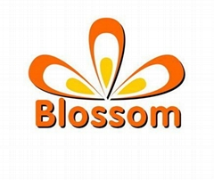 Blossom Industrial Corporation Limited