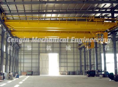 Single and Double Girder Overhead Crane 4
