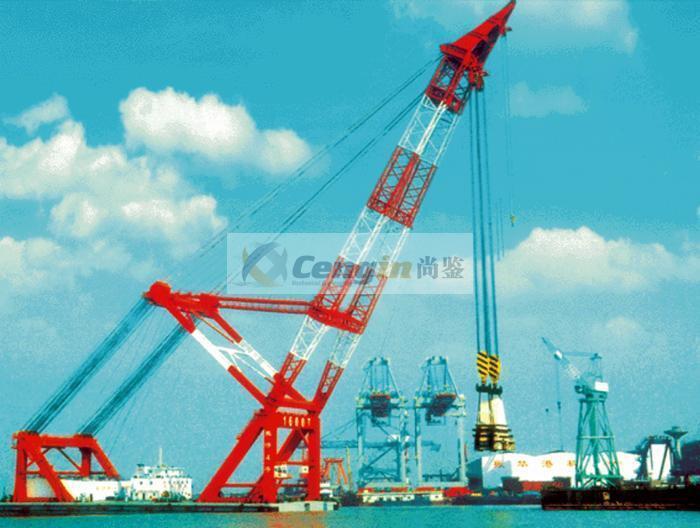 Floating Crane 5
