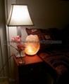 NATURAL SALT LAMPS 2
