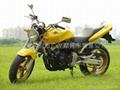 本田小黃蜂250摩托車