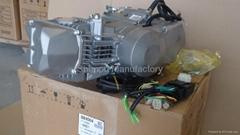 Anima Daytona 4v 150cc engine