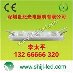 供应LED发光字模组