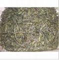 Steamed Green Tea (Bencha) 8912