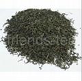 Extra Chunmee Green Tea AA