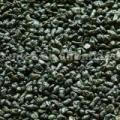 Green Tea (Gunpowder) (The Vert De Chine)