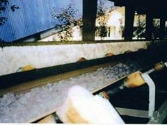 Chemical (Acid/alkali) resistant conveyor belt