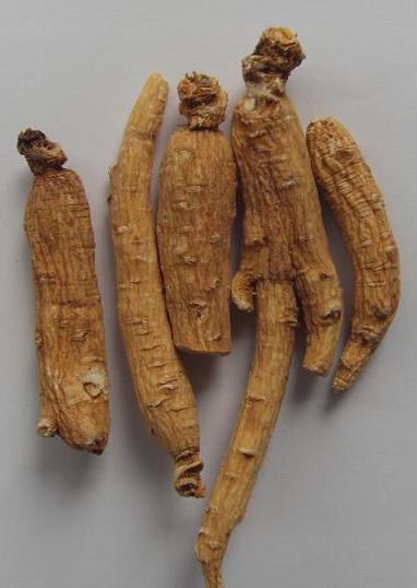 Organic ginseng root.etc 1